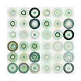 Mint Circles II Premium Giclee Print by Amy Lighthall