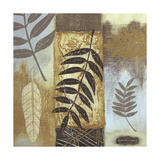 Patterns of Nature I Premium Giclee Print by Wendy Russell