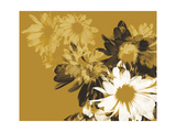 Golden Bloom II Premium Giclee Print by A. Project