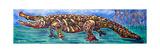 Allapattah, 2004 Giclee Print by Xavier Cortada