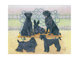 A Seat in the Park Giclee Print by Pat Scott