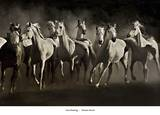 Dream Horses Prints by Lisa Dearing