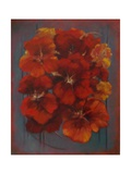 Nasturtiums 2012 Giclee Print by Lee Campbell