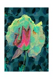 Tea Rose 4 Giclee Print by Scott J. Davis