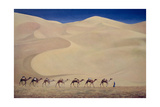 Camel Train Giclee Print by Tilly Willis