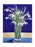 Snowdrops Giclee Print by Christopher Ryland