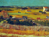 The Harvest, Arles Prints by Vincent van Gogh