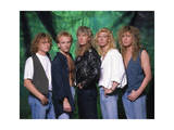Def Leppard - 15 Months of Rock 1987 Photo by  Epic Rights