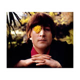 John Lennon - Weybridge Daisy 1965 Posters by  Epic Rights
