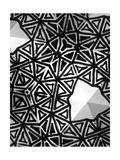 Buckminster I Affiches par Renee W. Stramel