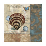 Botticelli Shell II Prints by W. Green-Aldridge