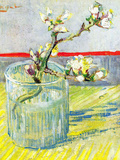 Almond Blossom Branch Posters by Vincent van Gogh
