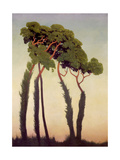 Pins parasols Giclee Print by Félix Vallotton