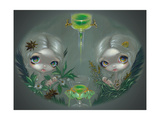 Absinthe: Anise and Artemisia Photographic Print by Jasmine Becket-Griffith