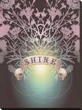 Shine Stretched Canvas Print by Anahata Katkin