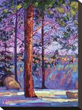 The North Rim I Stretched Canvas Print by Erin Hanson