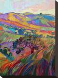 Paso IV Stretched Canvas Print by Erin Hanson