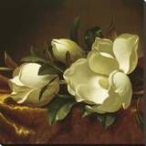 Magnolia Still Life II (detail) Stretched Canvas Print by Martin Johnson Heade