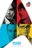 The Big Bang Theory - Revenge Prints