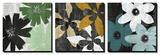 James Burghardt - Bloomer Squares Obrazy