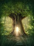 Fantasy Tree House with Light in the Forest Photographic Print by  egal