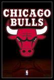 NBA - Chicago Bulls Logo Posters