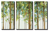 Forest Study I Crop Affiches par Lisa Audit