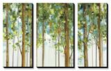 Forest Study I Crop Kunstdrucke von Lisa Audit