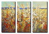 Field of Spring Flowers II Prints by Tim O'toole