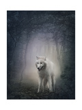 White Wolf Print by  egal