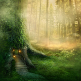 Fantasy Tree House in Forest Photographic Print by  egal