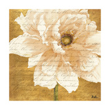 Beautiful Cream Peonies Script II Giclee Print by Patricia Quintero-Pinto