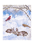 Nature in Winter I Premium Giclee Print by Vivien Rhyan