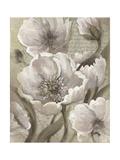 Scripted Beauty II Premium Giclee Print by Elizabeth Medley