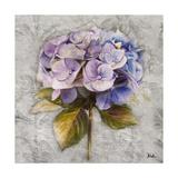 Lavender Flourish Square I Giclée-Druck von Patricia Pinto