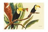 Tropical Toucans II Premium Giclee Print by Linda Baliko