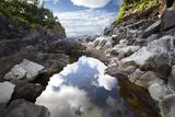 Reflecting Ravine Photographic Print by Bruce Nawrocke