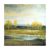 Marsh Lands II Premium Giclee Print by Michael Marcon