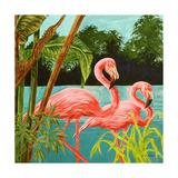 Hot Tropical Flamingo II Premium Giclee Print by Linda Baliko
