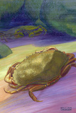Two Rock Crabs Giclee Print by William H. Crowder