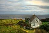 Irish Cottage House Photographic Print by Patryk Kosmider
