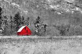 Rote Scheune Fotografie-Druck von  dbriyul