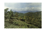 Eastern Jamaica's Landscape Is Tropical Due to Larger Rainfall Photographic Print by Jacob J. Gayer