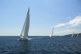 Sailing Yacht on the Race in a Sea. Posters by De Visu
