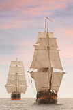 Tall Ships Front View Prints by  jgroup
