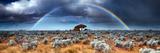 Rainbow in the Australian Desert Photographic Print by  kwest19