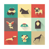 Vector Dog Prints by vector pro