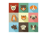 Pets Vector Icons - Cats and Dogs Elements Poster af Marish