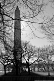 Washington Monument Black and White DC Photo