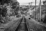 Train Tracks Oyster Bay New York B/W Poster